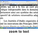 MediaInfo zoom to text